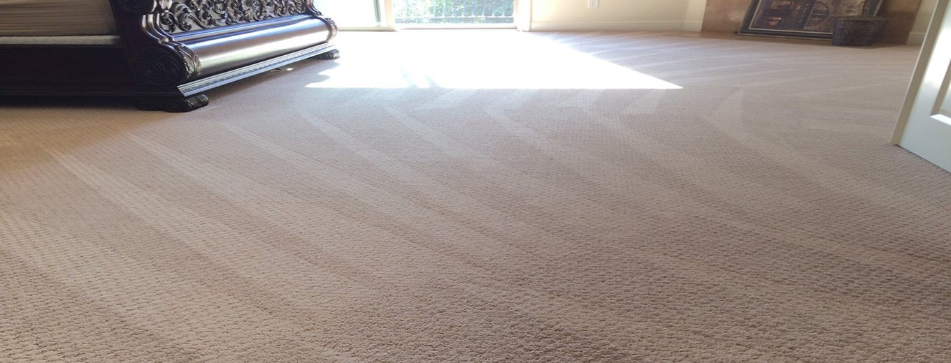 Best Quality Carpet Cleaning Service
