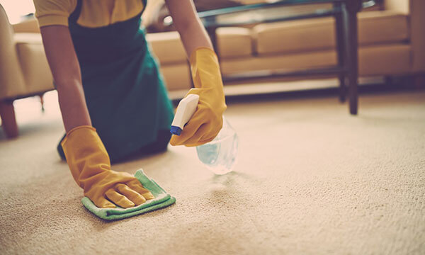 Orange County Spot & Stain Cleaning